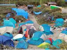 Jungle Camp Set For Closure