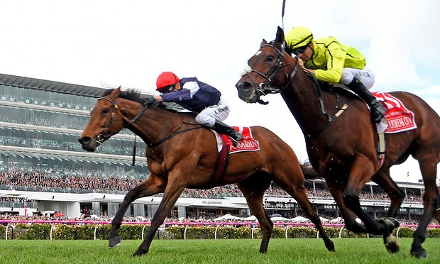 Irish hope pipped in Melbourne Cup