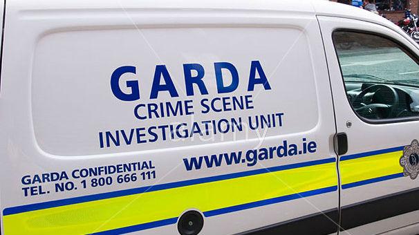 Gardai Examining Two Handguns In Lucan Murder