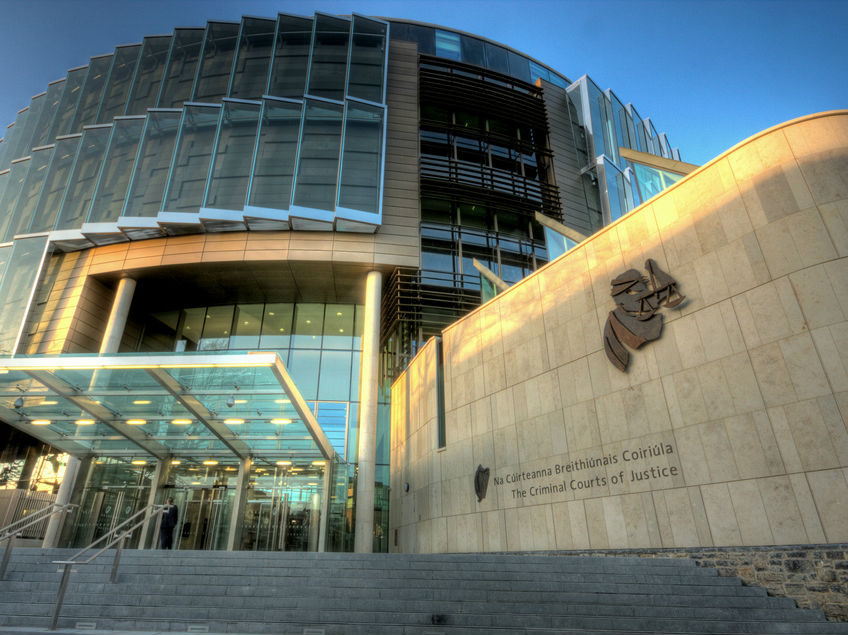 Tallaght Man Jailed Over Crash That Killed Friend