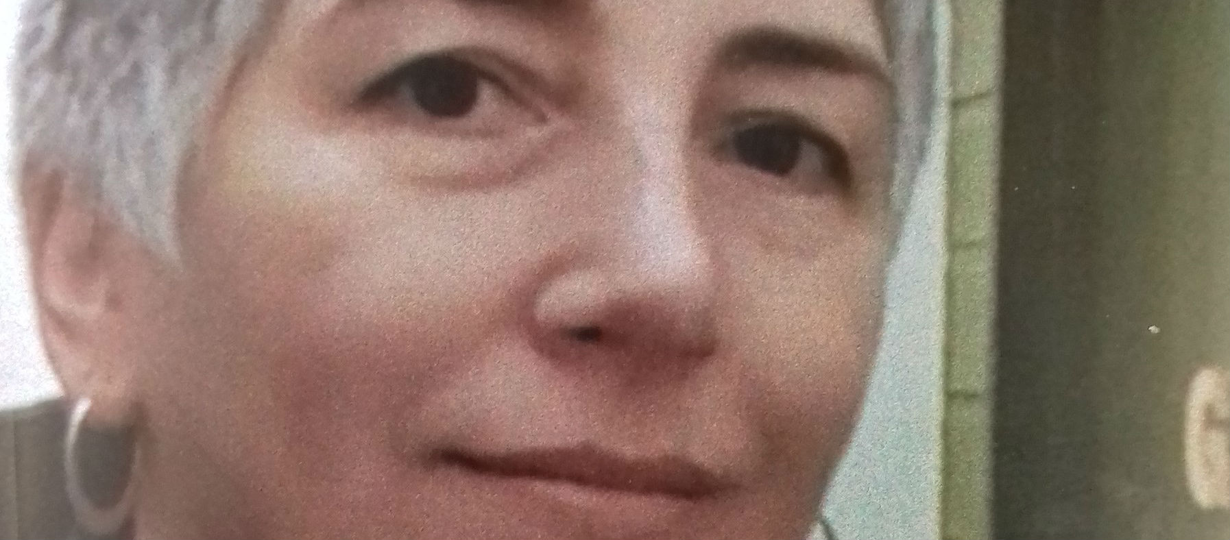 Gardai Try And Trace A Missing Bray Woman