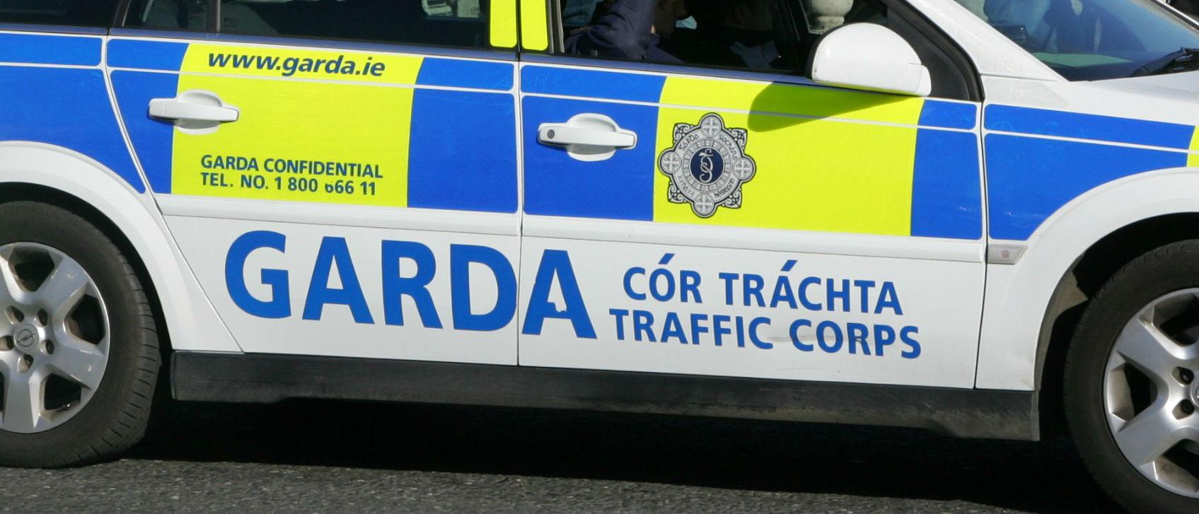 Man Dies in Wicklow Crash