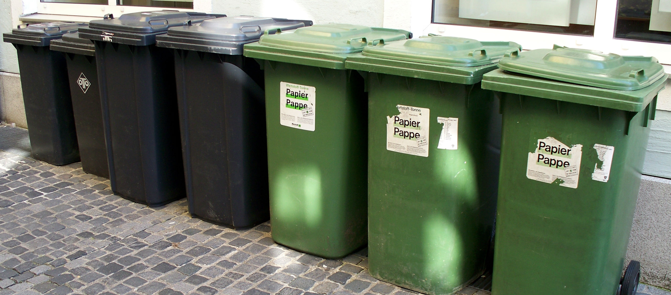 City Councillors Back Scrapping Bin Charges