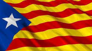 Violence erupts at referendum in Spain