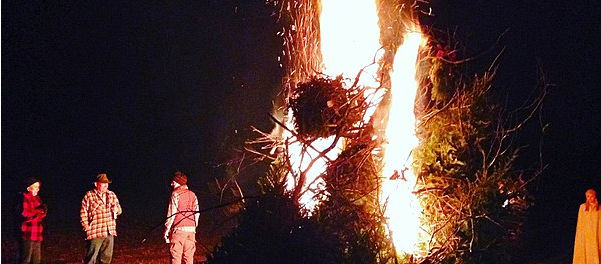 DCC To Clampdown Bonfire Stockpiles
