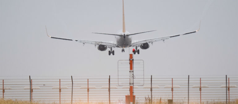 Wildlife Pose Danger To Aircraft