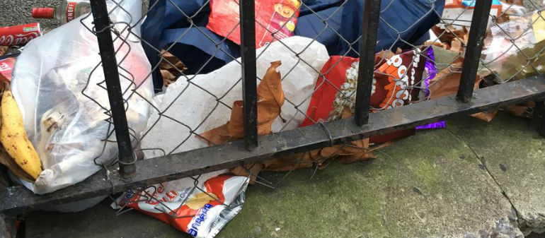 Row erupts over budget for city litter