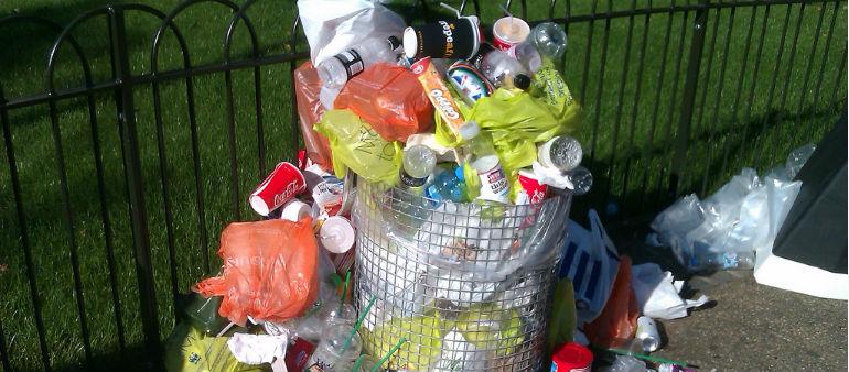 Mixed Bag For Dublin In Litter Survey
