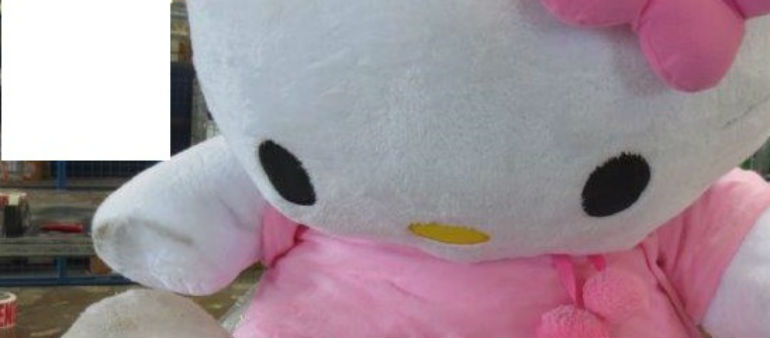 Drugs Found Inside Stuffed Toy