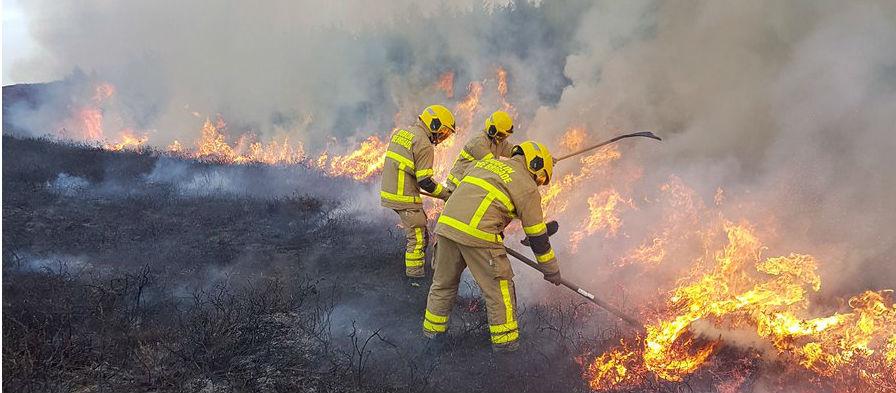 Crews Battle Southside Gorse Fire