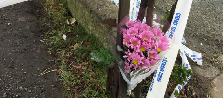 Man arrested over Joanne Lee murder