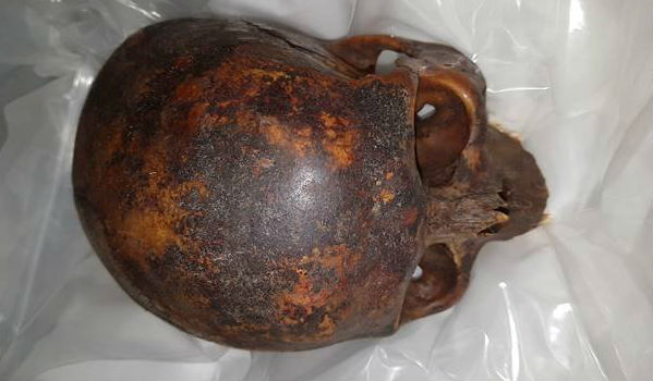 Stolen Mummy's head recovered
