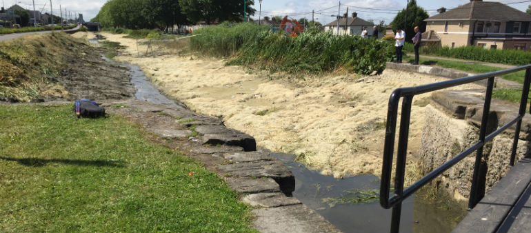 Section of Dublin's Grand Canal partially drained after drain collapse