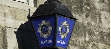 Gardai Investigate Assault Claims